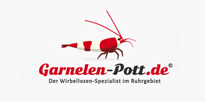 Logo Design | mediadesign linke Logoentwicklung / Logodesign aus Essen für www.garnelen-pott.de / Garnelenpott.de - dem Wirbellosenspezialist im Ruhrgebiet